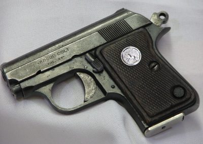 Colt, Junior Colt (6)